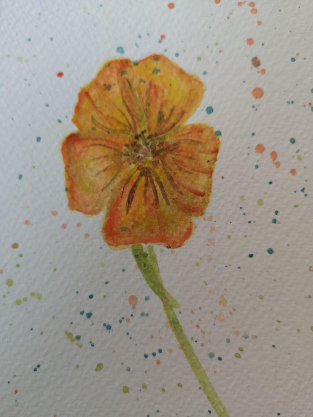 Rumena rožica - image 1 - student project