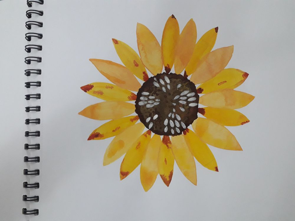 Botanical Watercolors with a Modern Twist - image 1 - student project