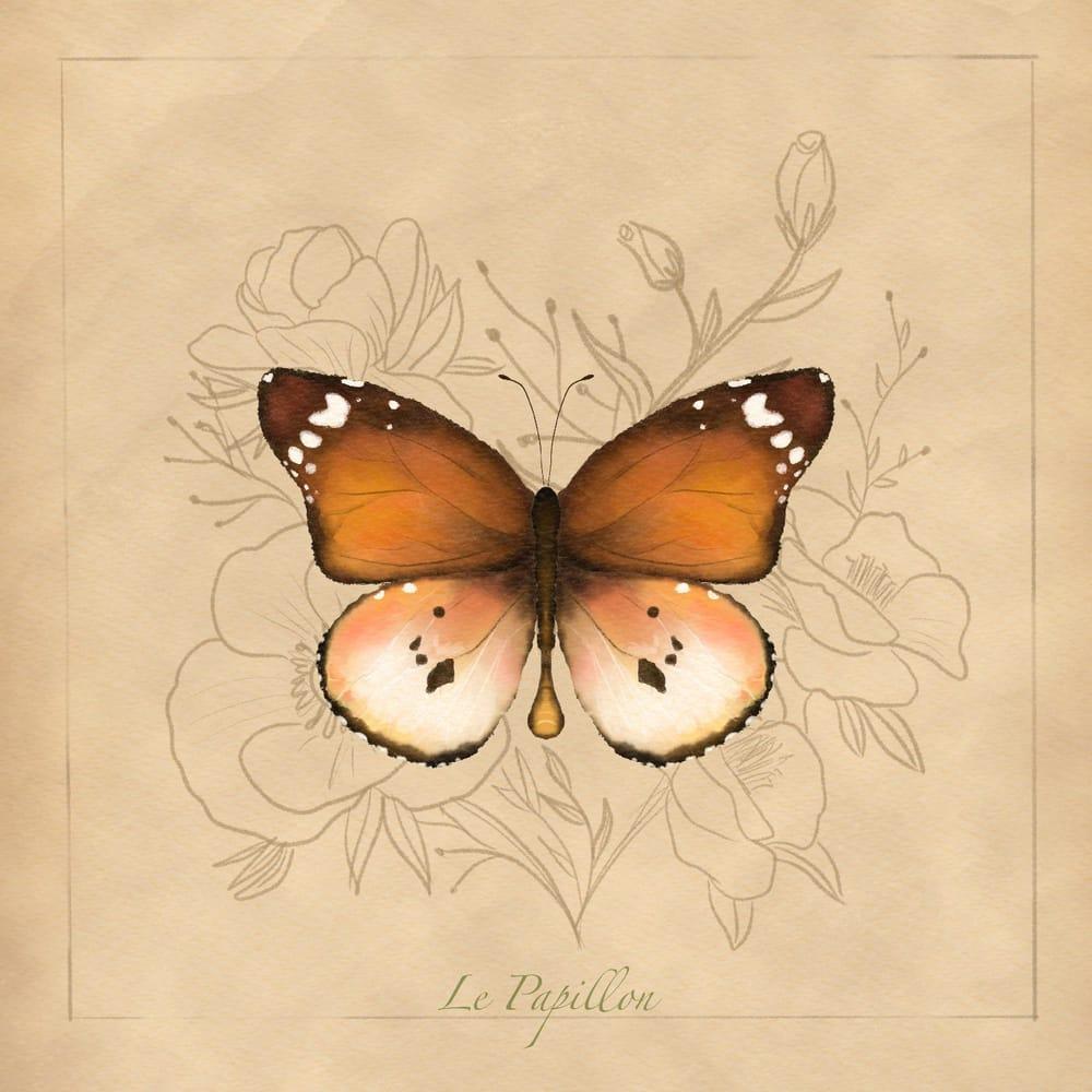 Le Papilon - image 1 - student project