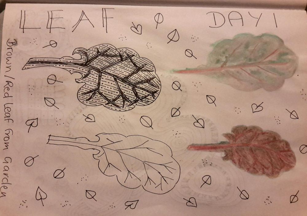 A wee peek into my journal - image 1 - student project