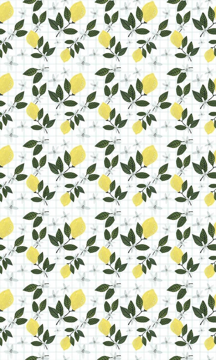 Lemon Breeze - image 3 - student project