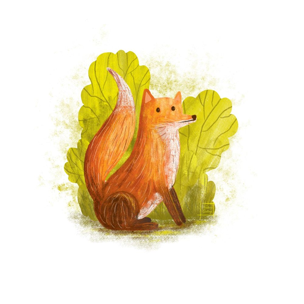 Red Fox Illustration - image 2 - student project