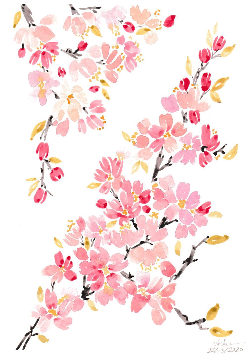 Watercolor Cherry Blossoms - image 4 - student project