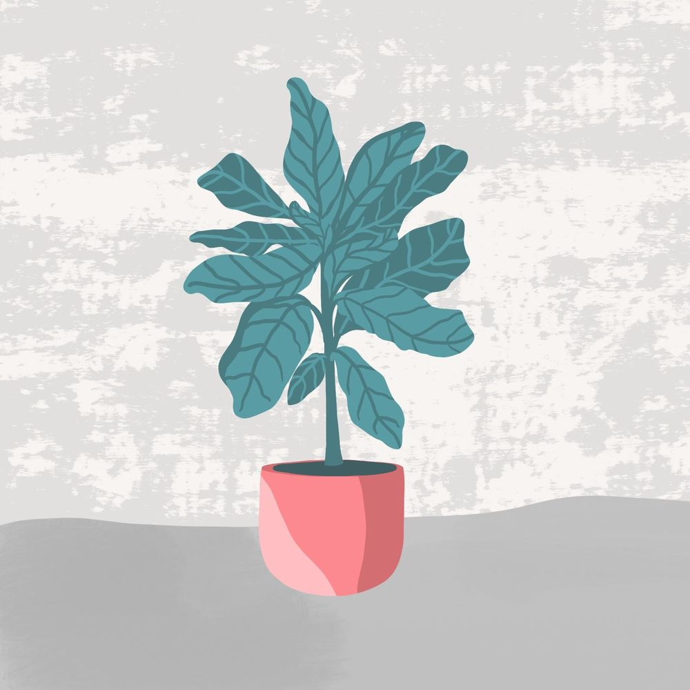 Plant in the pot - image 1 - student project