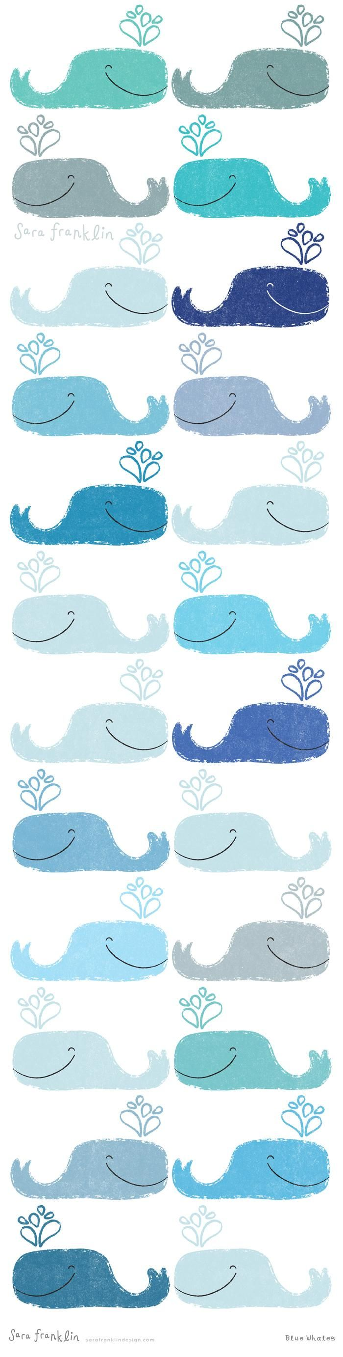 Blue Whales - image 1 - student project