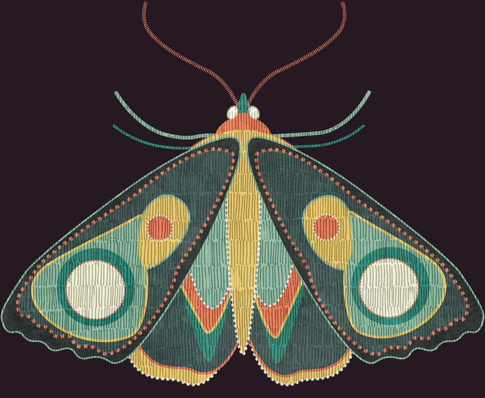 Pattern W.I.P + Moths - image 1 - student project