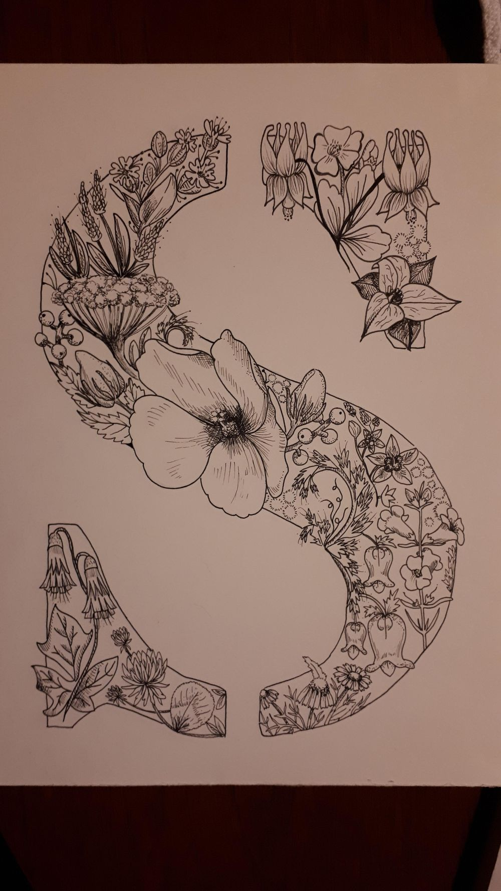 """Letter """"S"""" w/ Native to Ontario Flowers - image 2 - student project"""