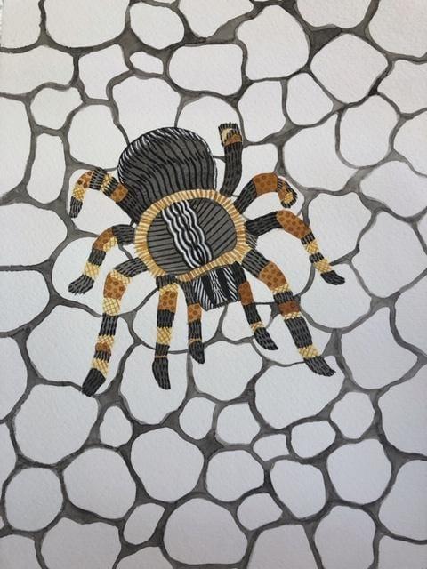 Tarantula - image 2 - student project
