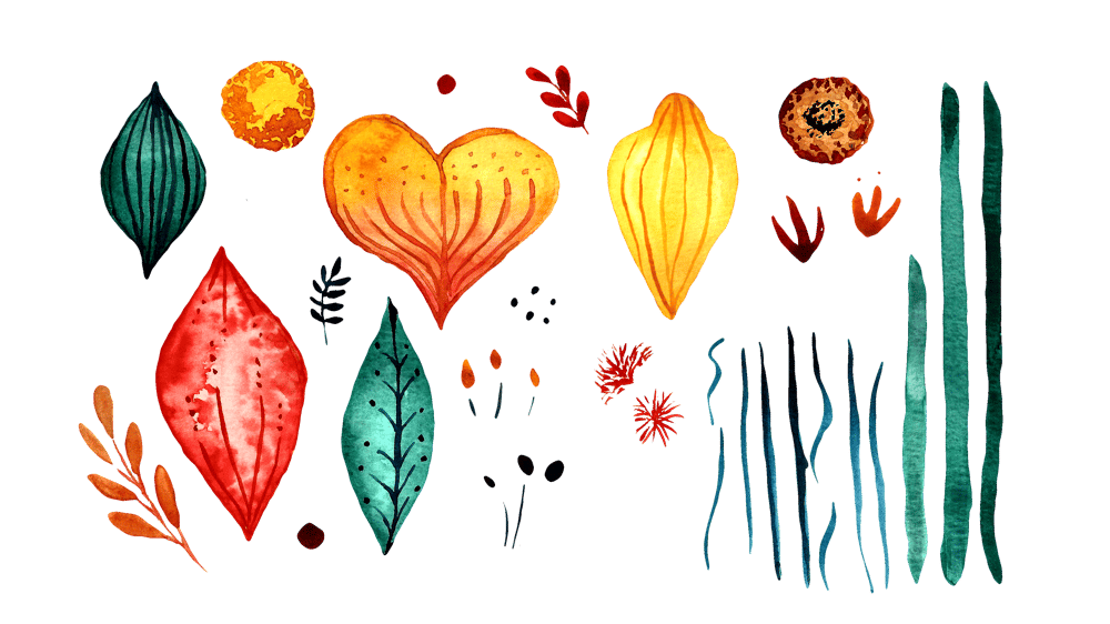 Botanical Scenes in Photoshop - image 2 - student project
