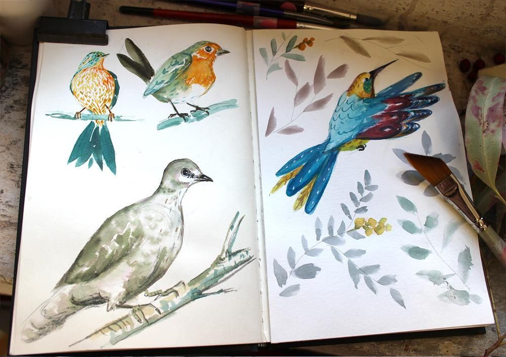 Colourful Birds - image 2 - student project