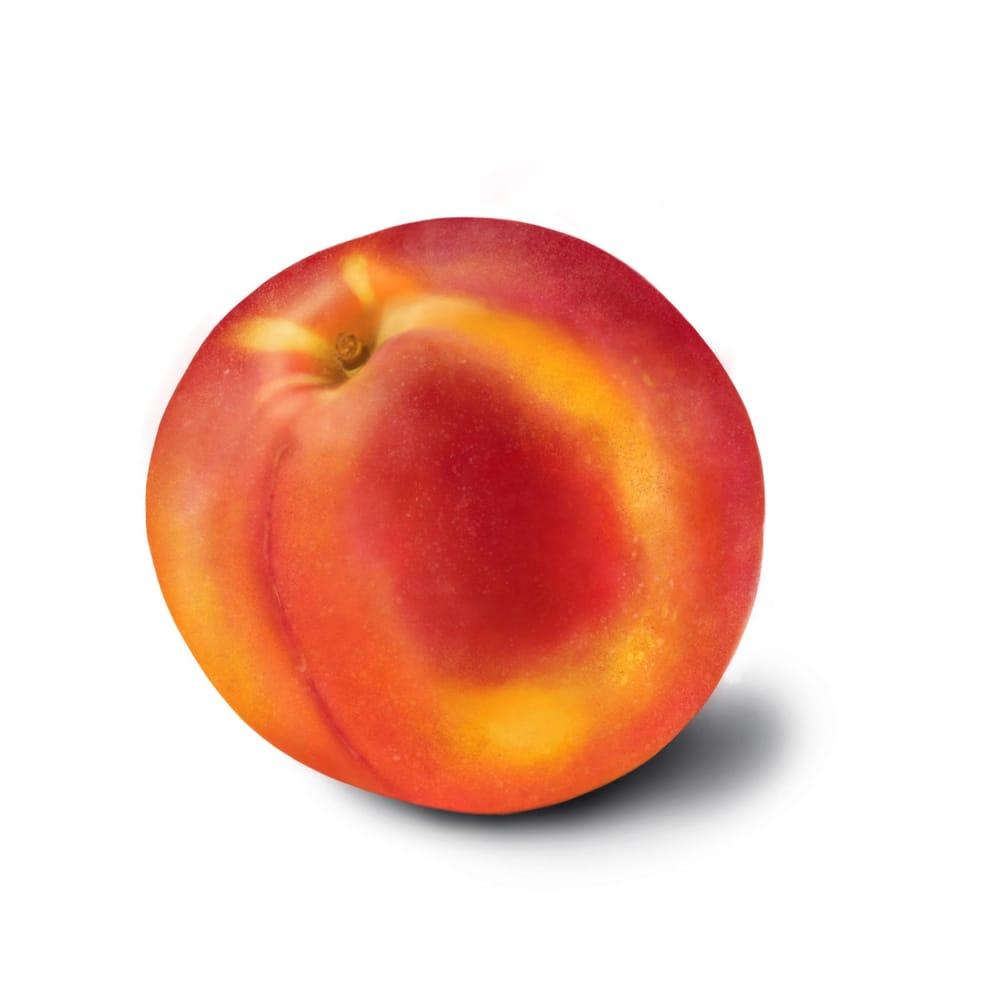 Fruit studies - image 3 - student project