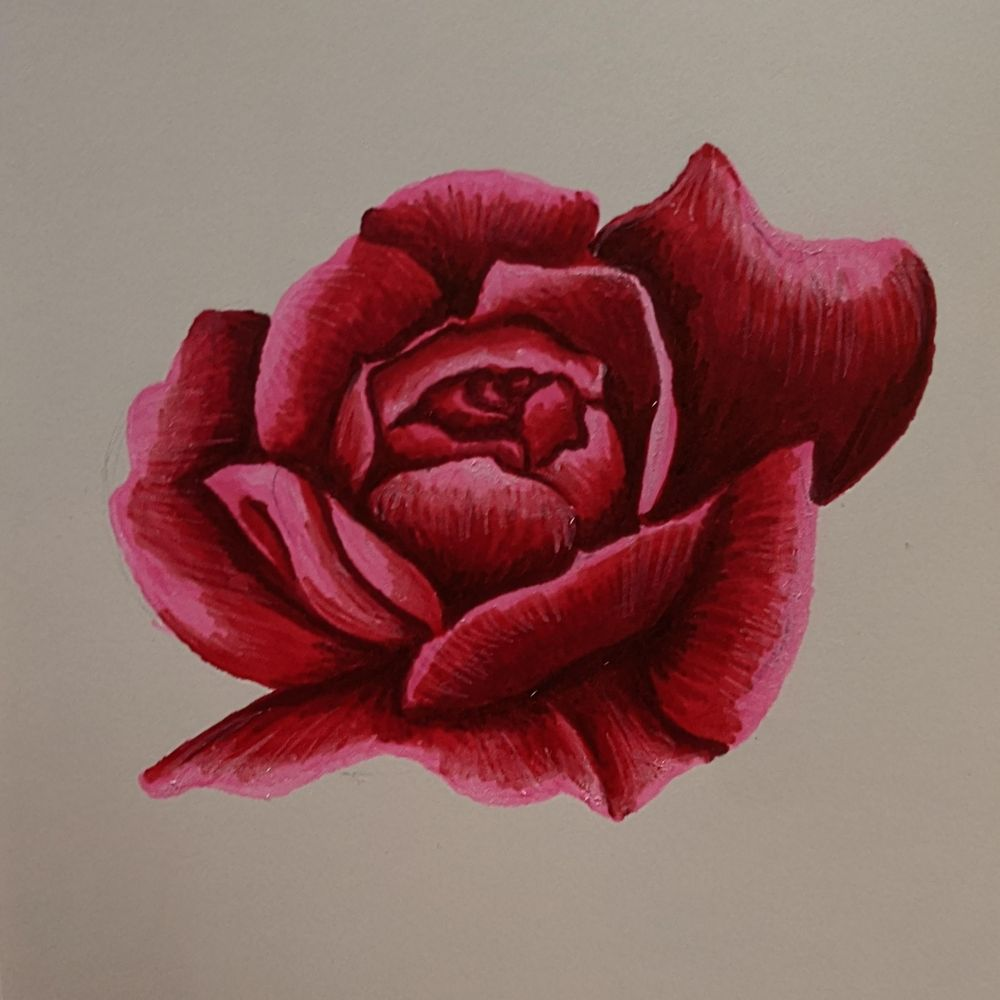 Alcohol Marker Rose - image 2 - student project