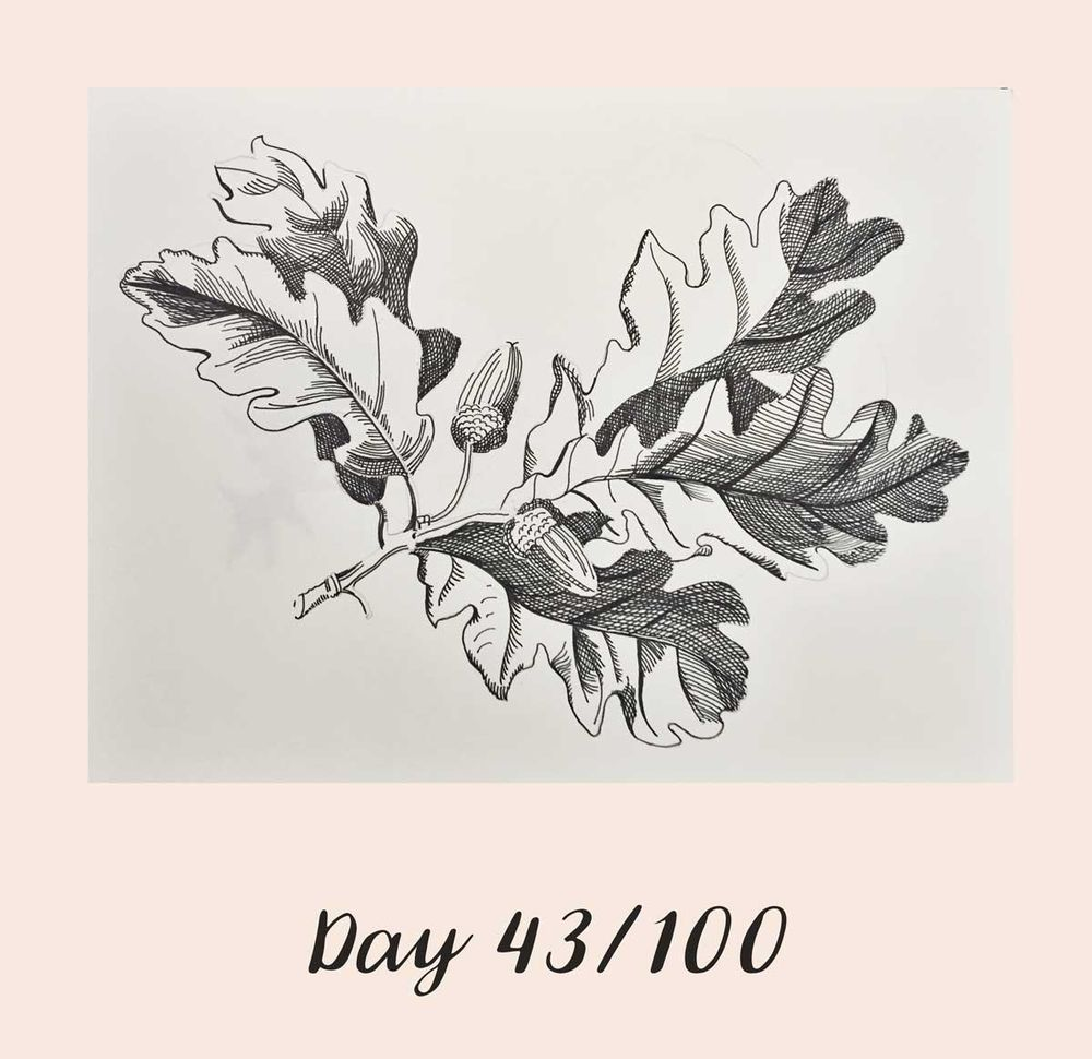 *COMPLETE* 100 Days of Sketching (Updated March 10th, Day 100/100) - image 39 - student project