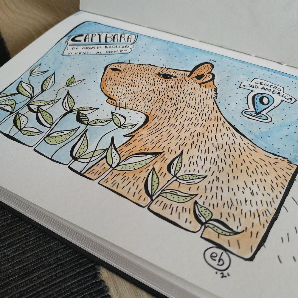 Sketchbook Lover - in progress :) - image 7 - student project