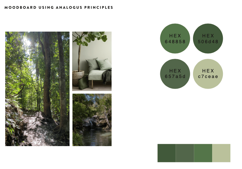 Mood Board & Colour Palettes - image 2 - student project