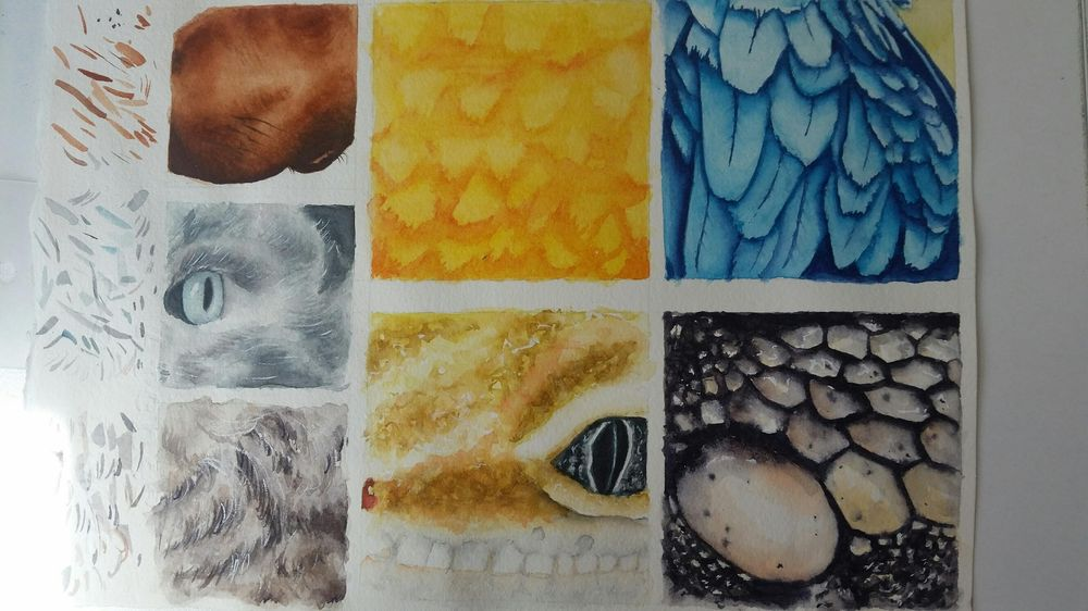 Textures - image 1 - student project