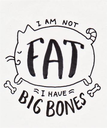 I am not fat, I have big bones - image 2 - student project