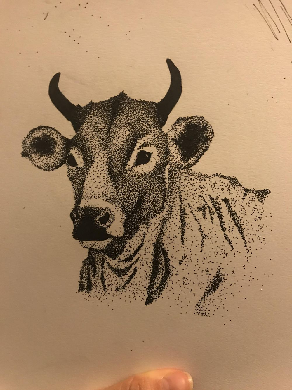 Bull - image 1 - student project