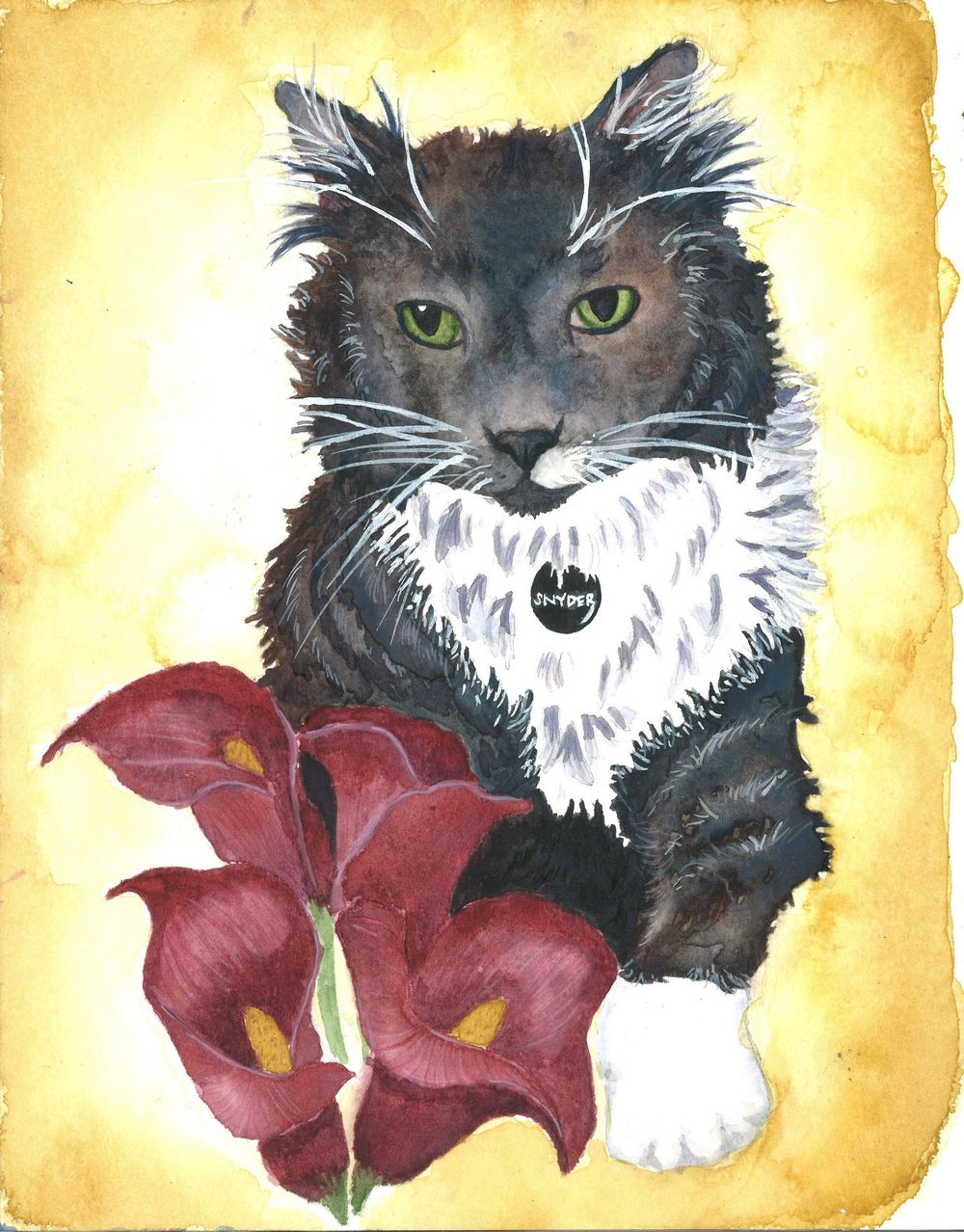 Cat Portraits! - image 3 - student project