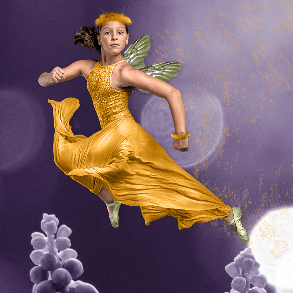 Bee Fairy - image 1 - student project