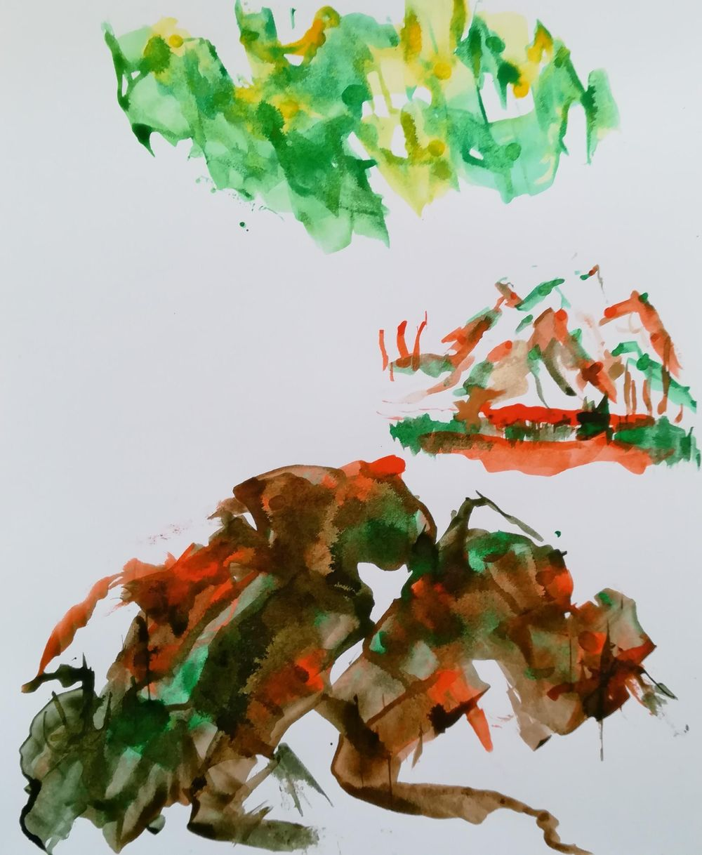 A splash of colour - image 4 - student project