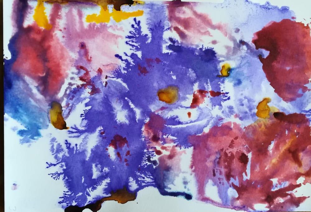 A splash of colour - image 6 - student project