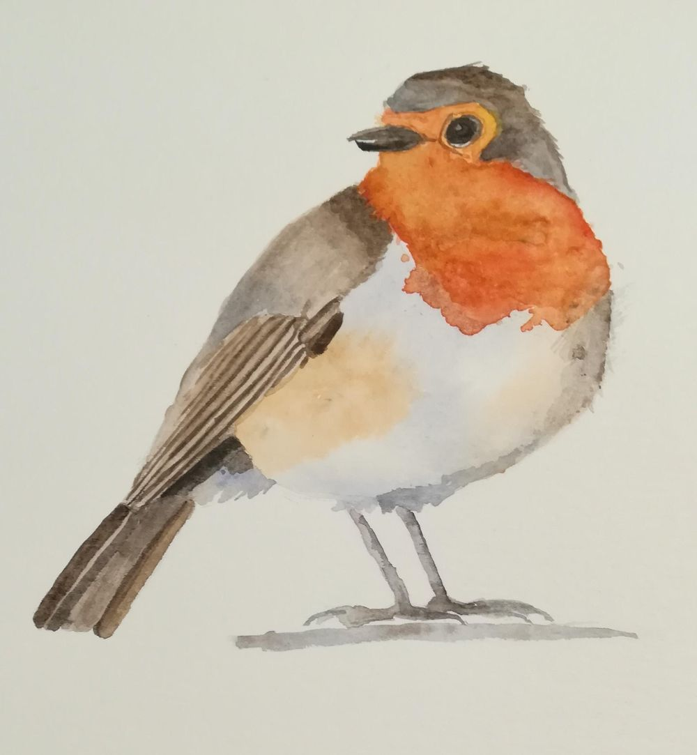 Bea's robin - image 1 - student project