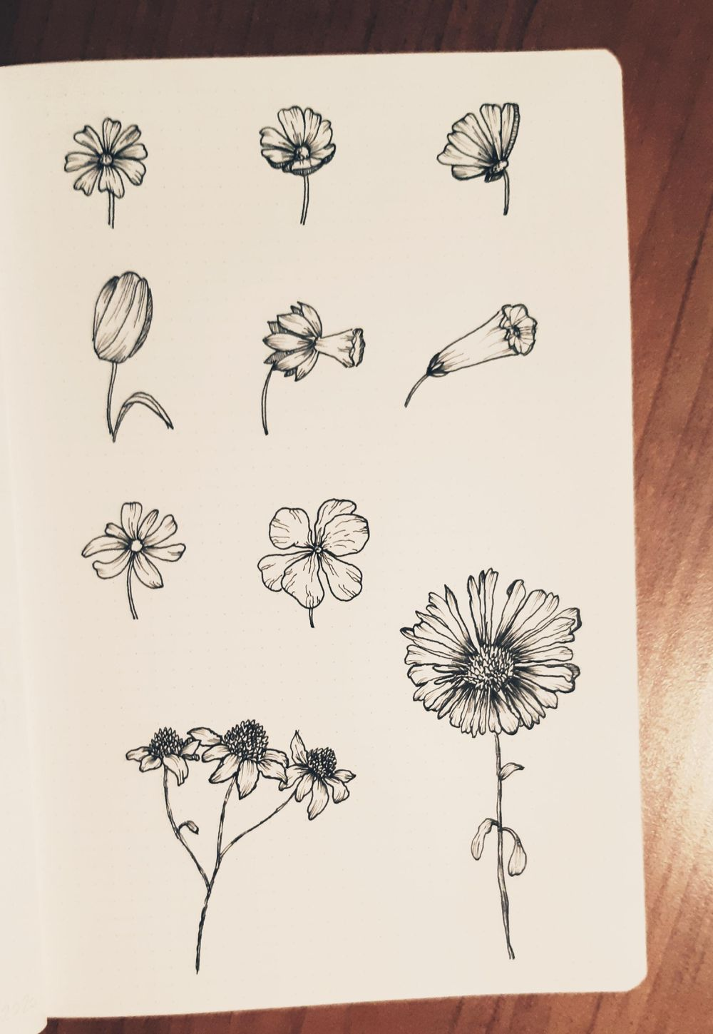 Ink Flowers - image 1 - student project