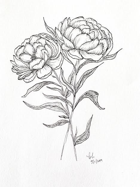 Pretty Peonies - image 2 - student project
