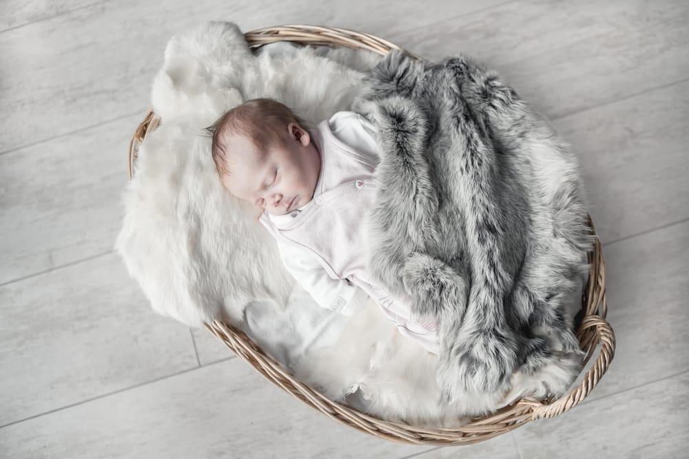 Newborn Girl - image 18 - student project