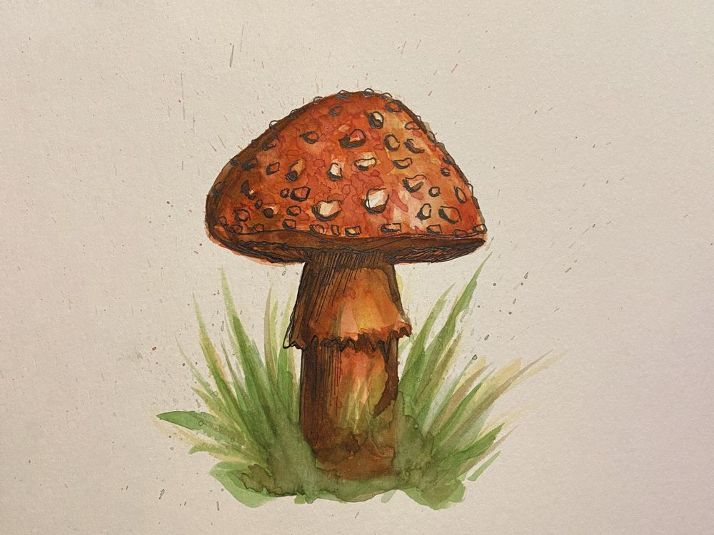 My first watercolor painting! - image 1 - student project