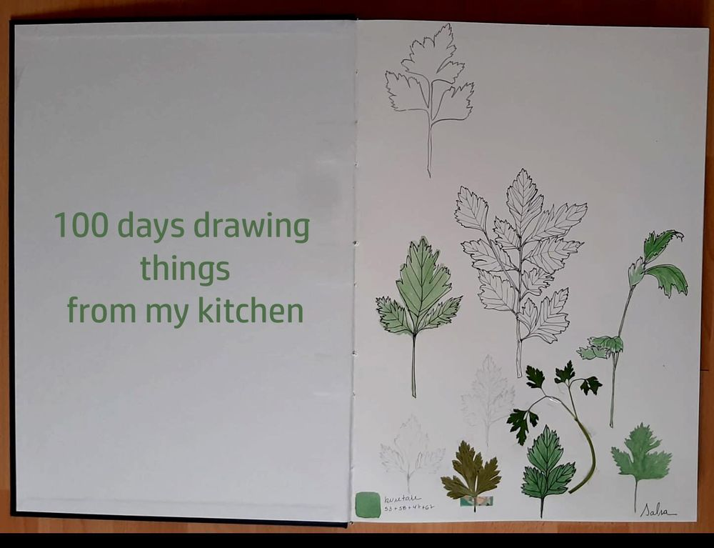100 days drawing things from my kitchen - image 1 - student project