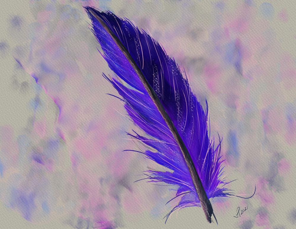 Final Project - Feather - image 1 - student project