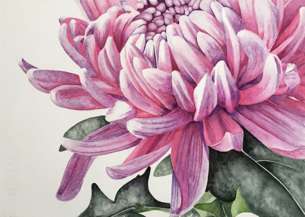 Chrysanthemum - image 1 - student project