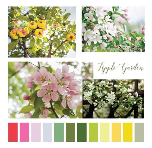 Apple Garden - image 1 - student project
