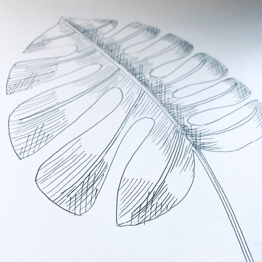Zendoodle - Florals - image 2 - student project