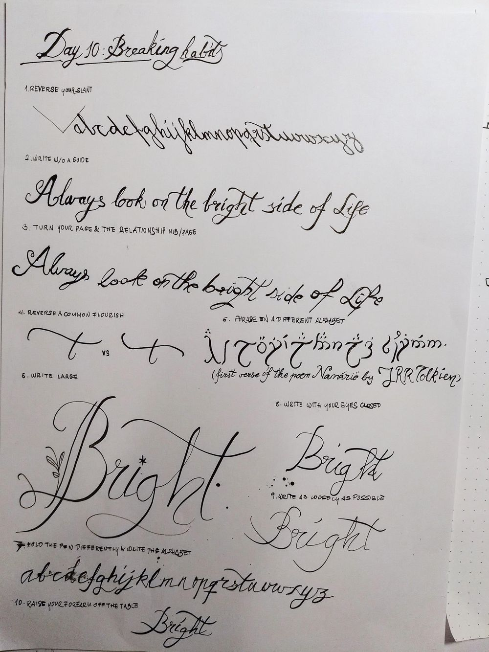 Ten-Day Calligraphy Challenge - image 1 - student project