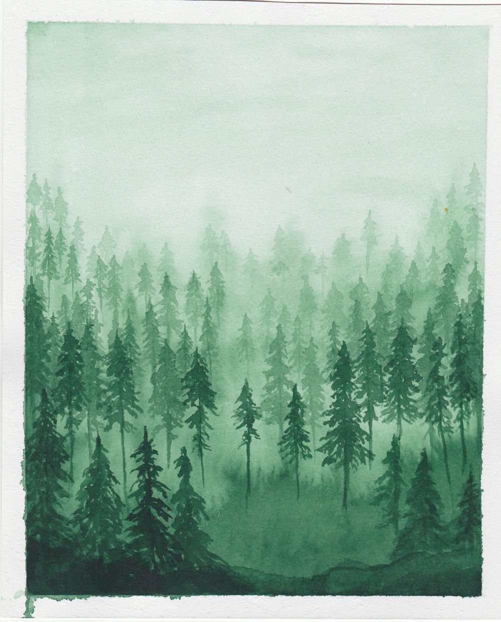 green forest with lots of trees - image 1 - student project