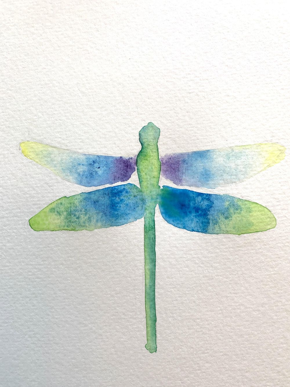 Dragonfly Process - image 2 - student project