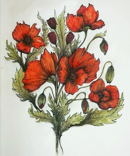 Pen and Ink Poppies - image 2 - student project