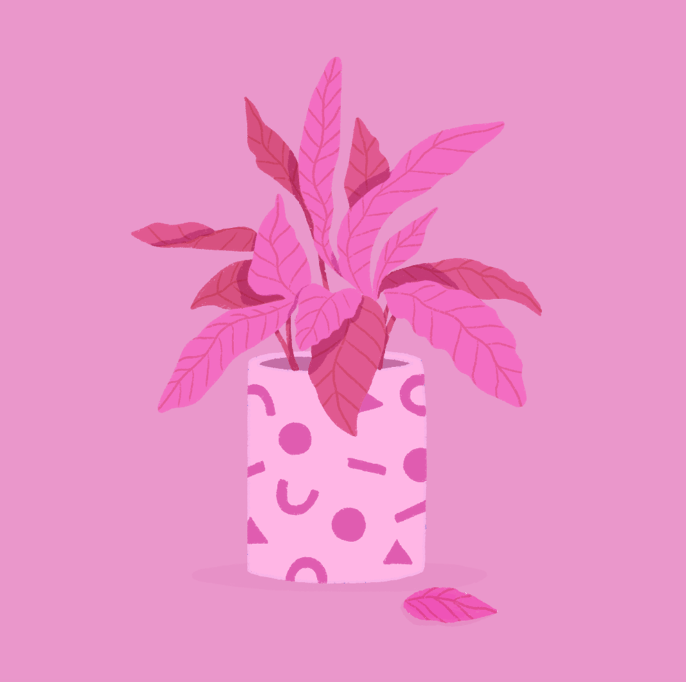 Plant - image 1 - student project