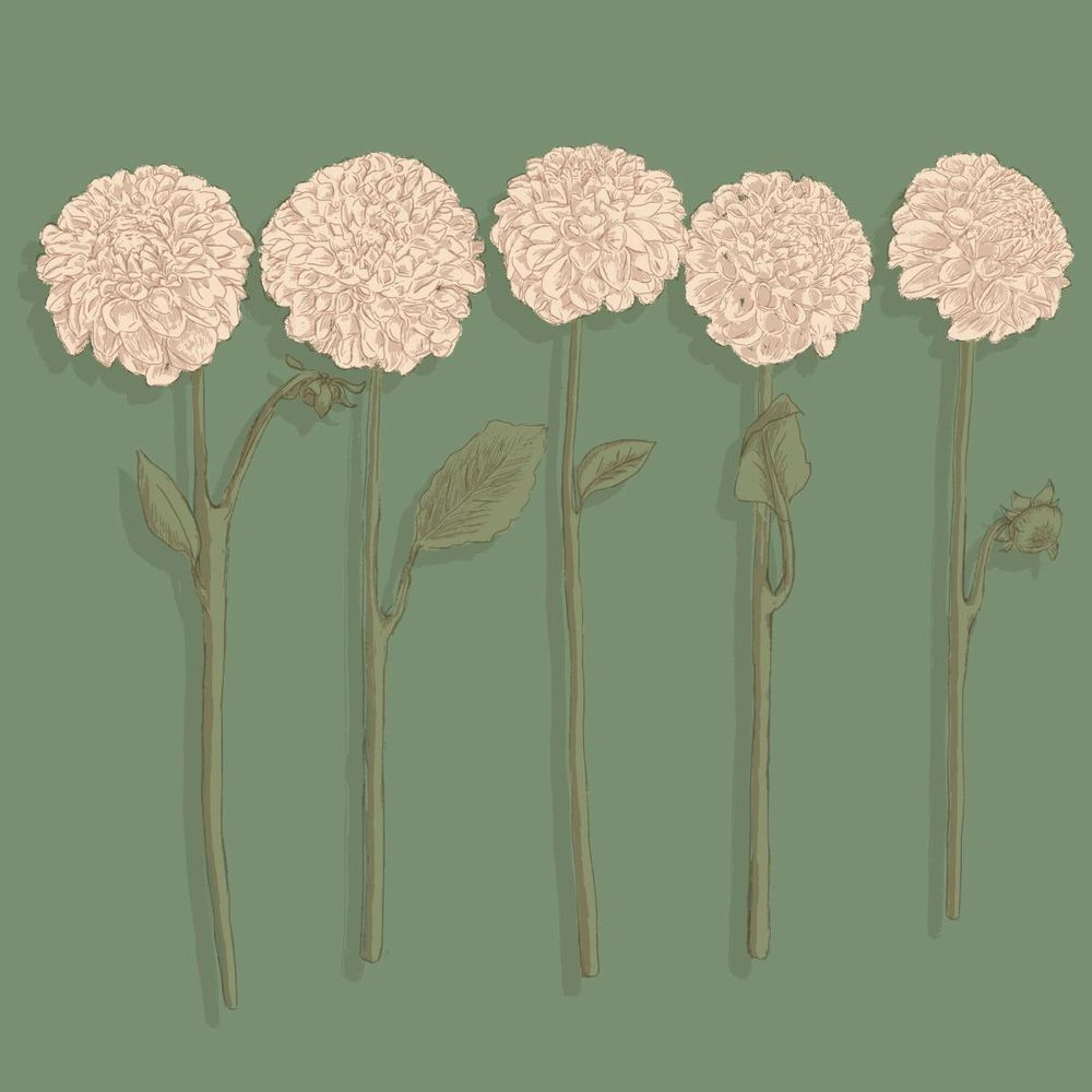flower shop - image 2 - student project
