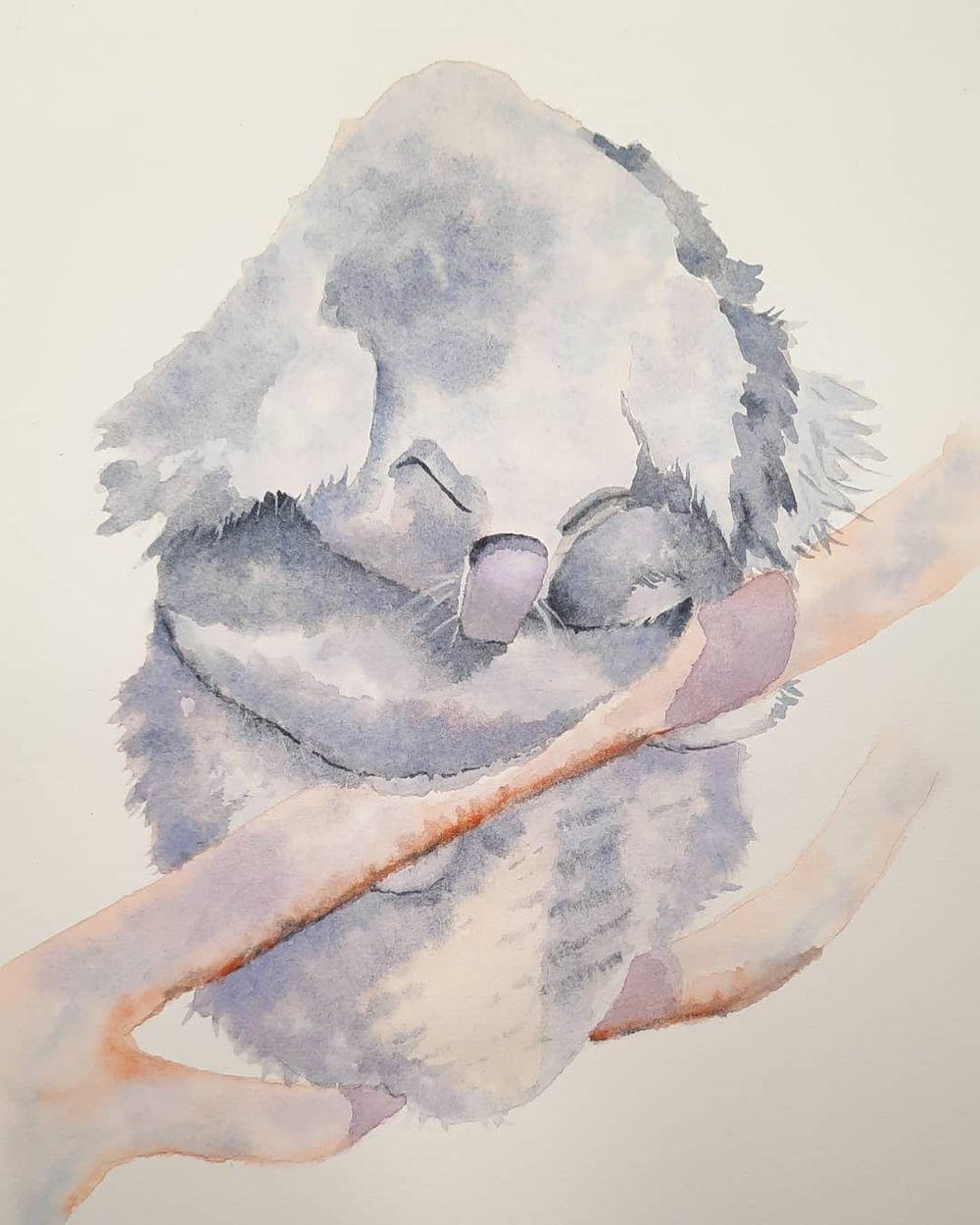 Sleepy Koala ♡ - image 1 - student project