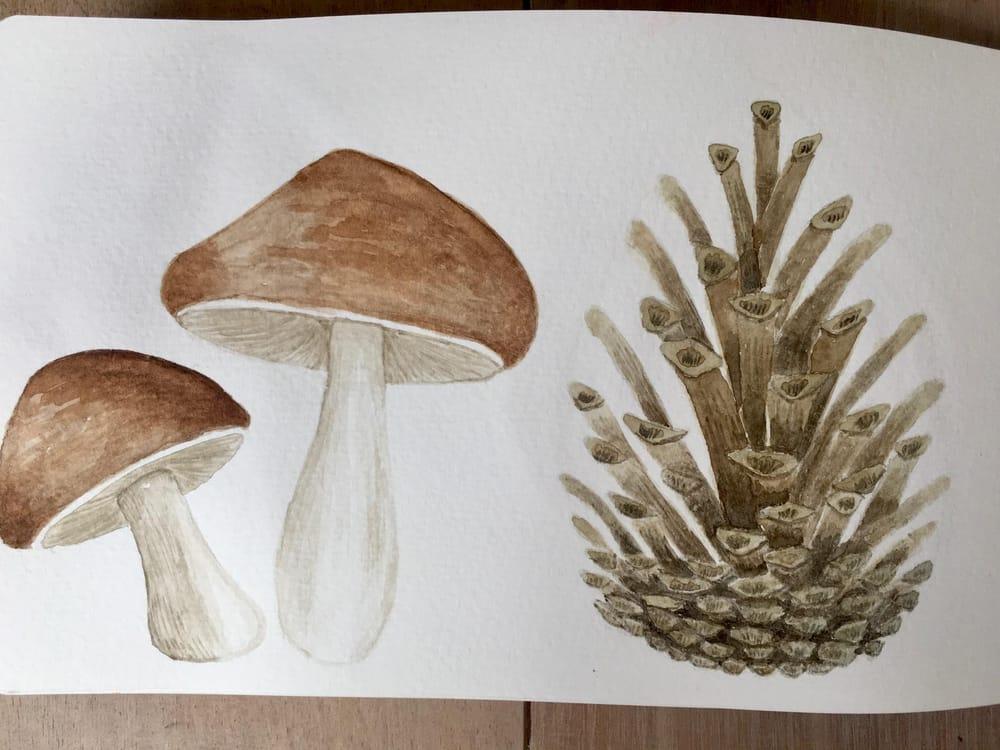 Autumn sketchbook - image 3 - student project
