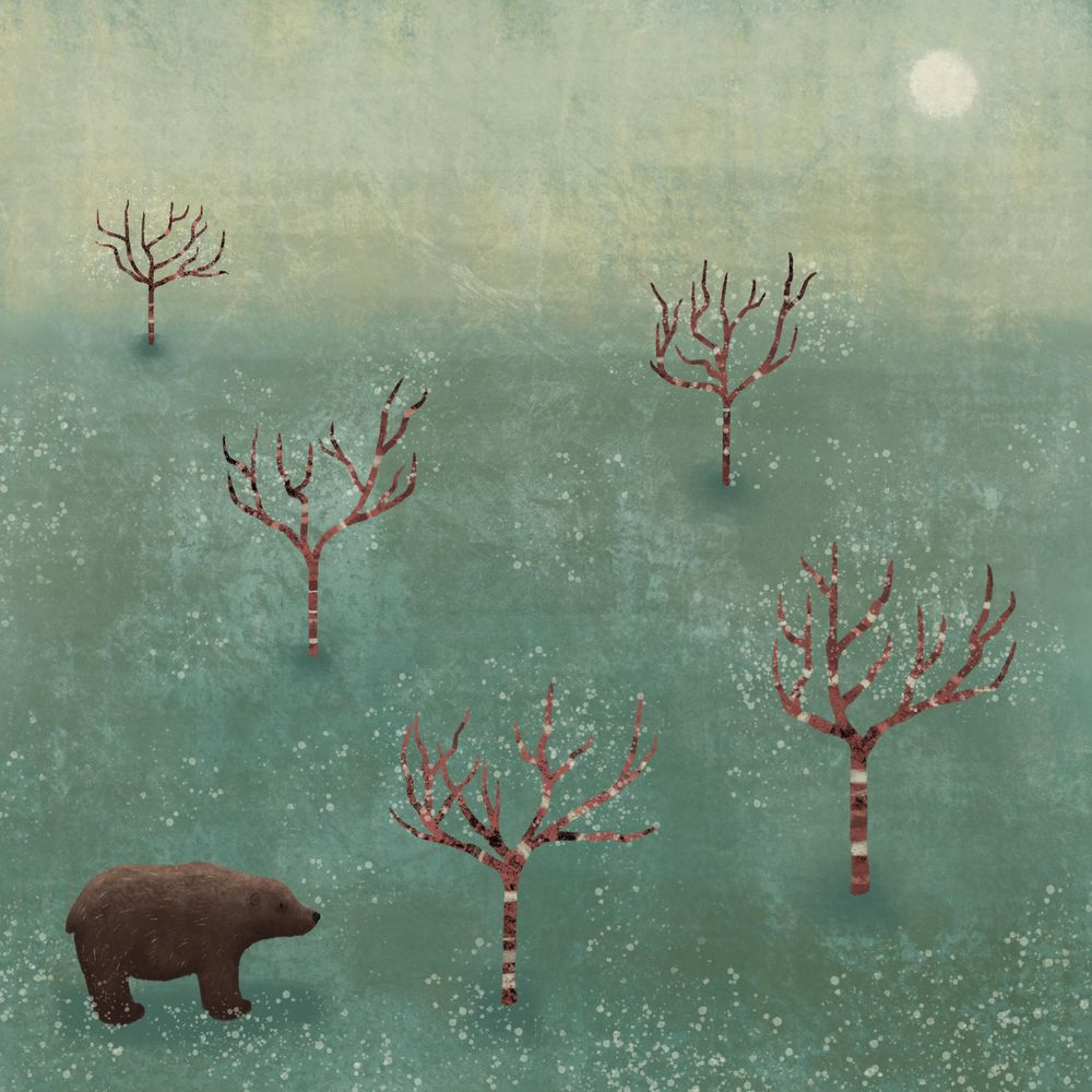 Bear in the woods - image 1 - student project
