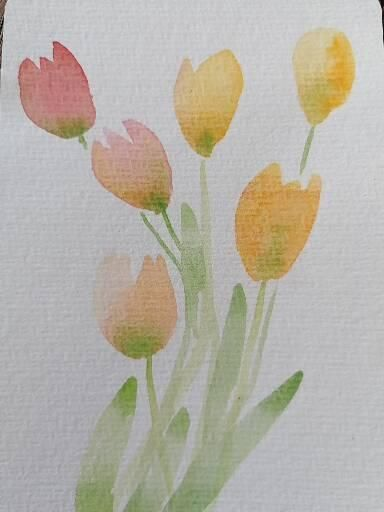 Tulpen - image 2 - student project