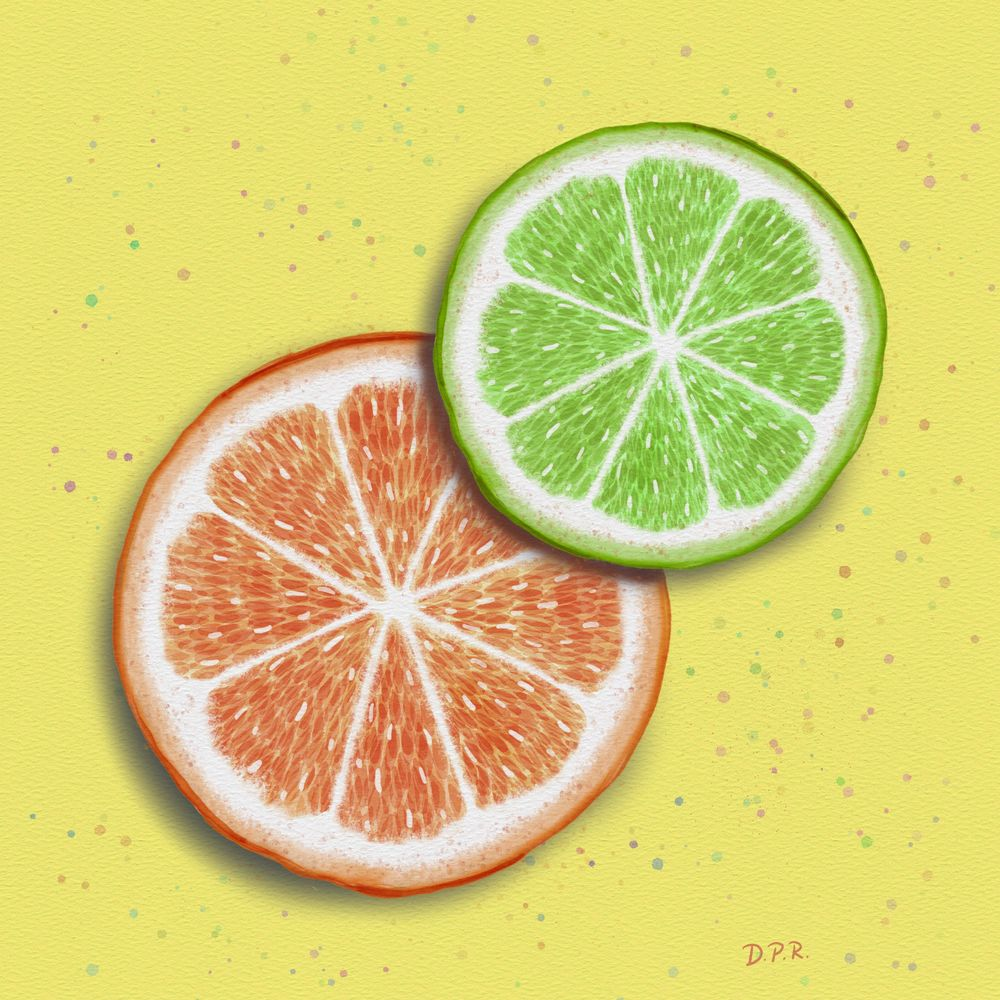 Citrus Slices - image 1 - student project