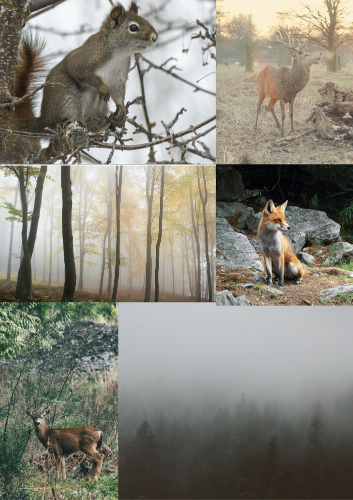 Festive Deer letterpaper - image 1 - student project