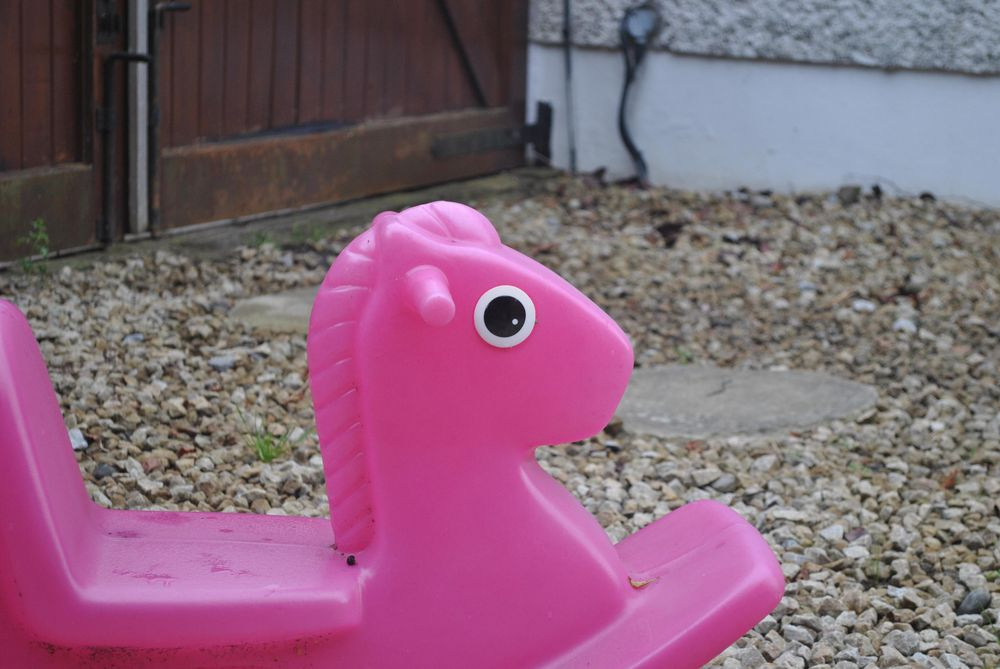 Pink Horse - image 2 - student project