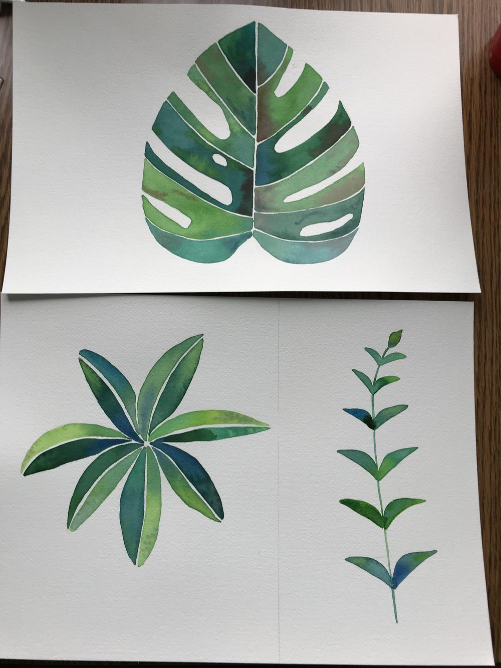 Modern Botanical Watercolor Paintings - image 1 - student project
